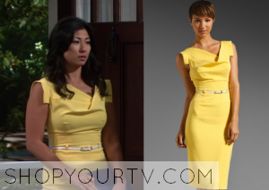 Friends With Better Lives: Season 1 Episode 1 Will's Ex-Wife's Yellow Dress