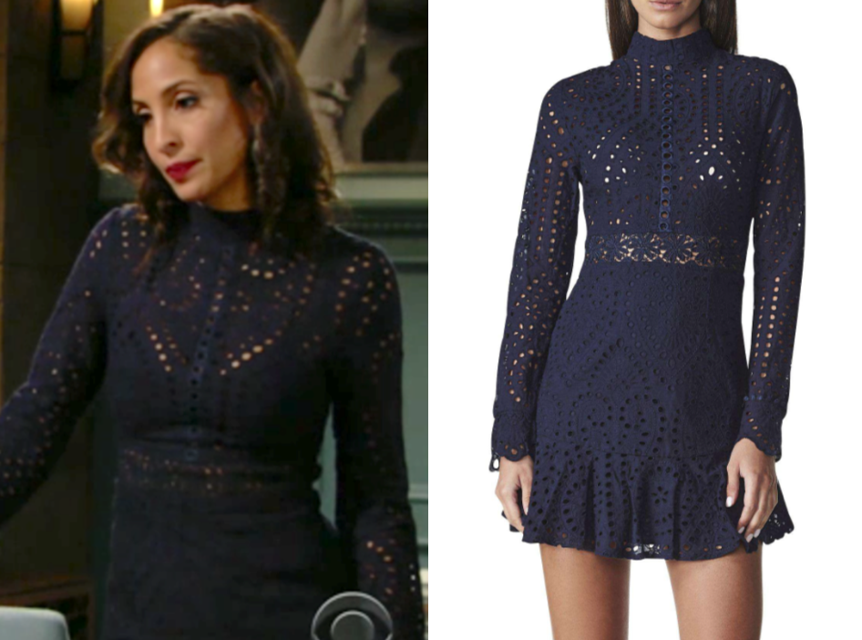 Lioness High Neck Cutwork Lace Mini Skater Dress, the young and the restless, lily ashby, christel khalil