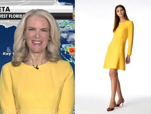 janice dean, yellow dress, fox and friends