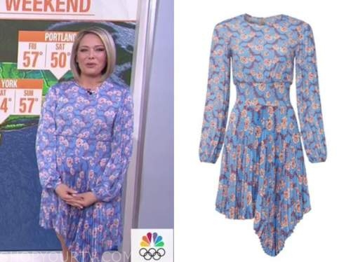 the today show, blue and pink floral pleated dress, dylan dreyer