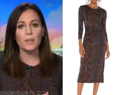 hallie jackson, the today show, brown snakeskin dress
